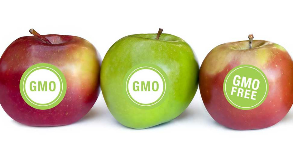 The truth about Genetically Modified Organisms