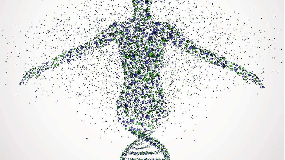 Molecular Speciation Provides Insights Into How modern Humans Came To Be