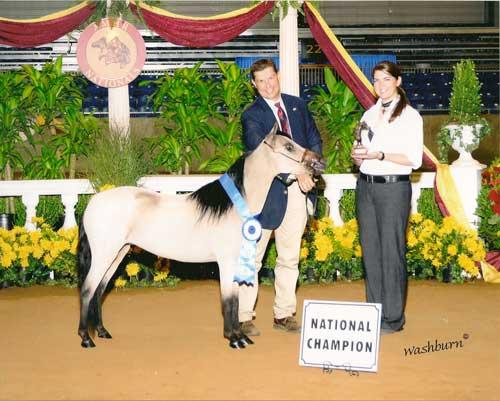 Arions+buckin+beauty+national+winner.jpg