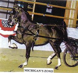 Michigan's Zoro