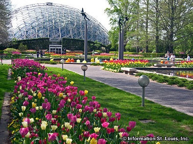 missouri-botanical-garden-7-63110.jpg