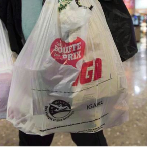 Banning Single-Use Plastic Bags in the Comox Valley