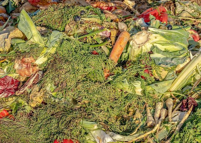food-waste-cvnhe.jpg