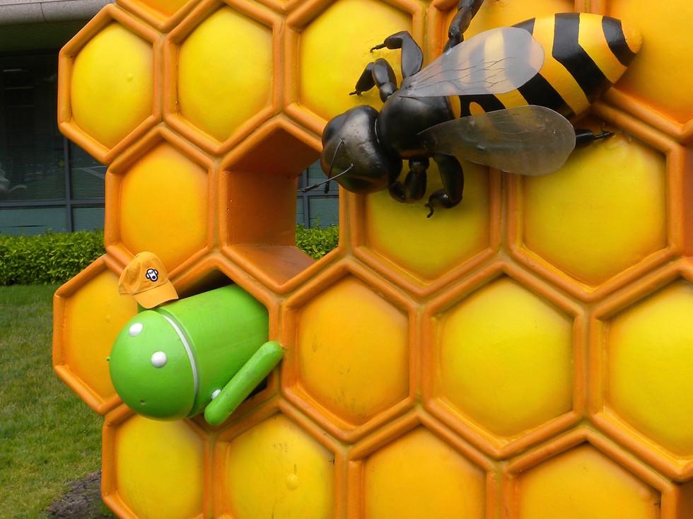 The Perilous Honeycomb