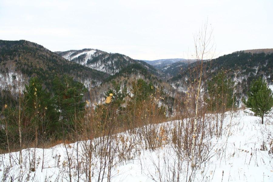 Вид с Царской горы. Село Бархатово