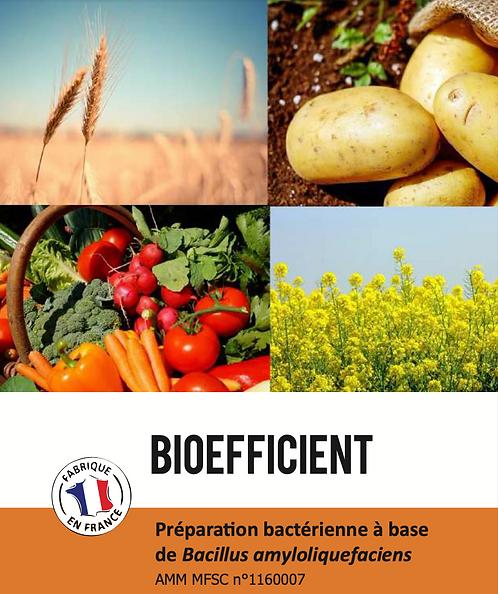 Bioefficient UAB