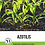 Thumbnail: Azolitis UAB