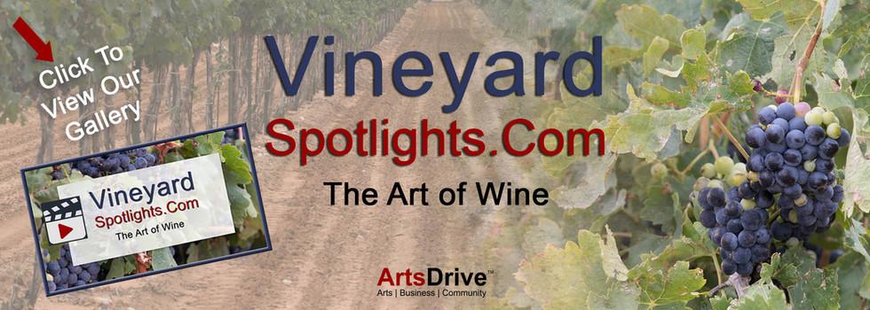 Vineyard_Spotlights_Banner_Gallery_Desti