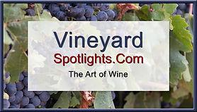 Vineyard_Spotlights.jpg