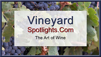 Vineyard_Spotlights.jpg