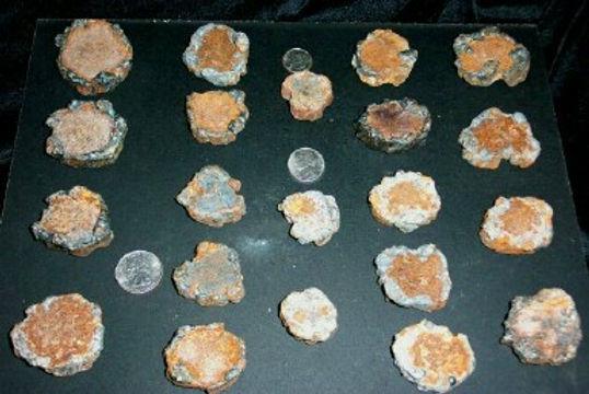 Plate of Brass Missing Tools Landing Site San Quentin Hanff assay