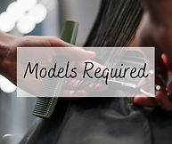 Models Required.png