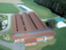 Zimmermann Stall