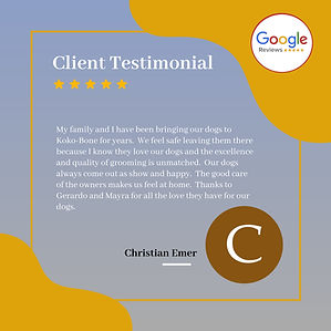 KOKO review Christian.jpg