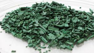 La spiruline, l'algue aux 1001 vertus