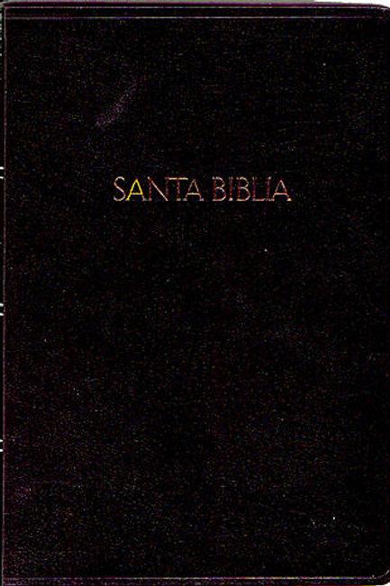 Biblia RV 1960 con letra super gigante (16 puntos)