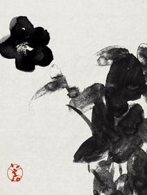 009 camellia