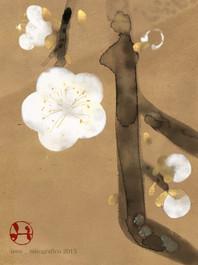 586 plum blossom