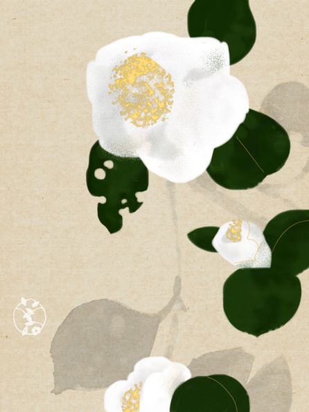 784 camellia