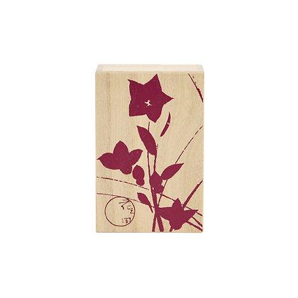 small paulownia box _ chinese bellflower