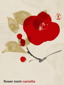 827 camellia