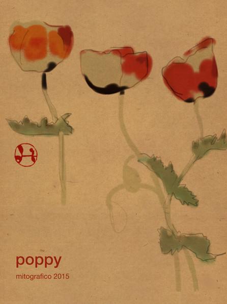 641 poppy