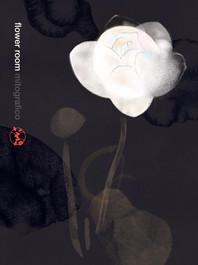 624 lotus