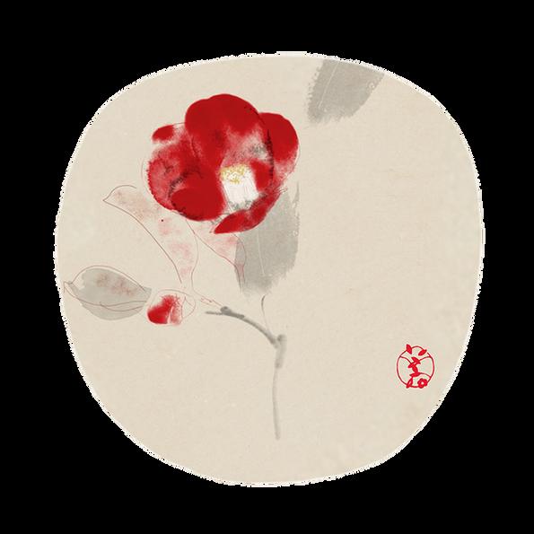 010 Camellia Fan