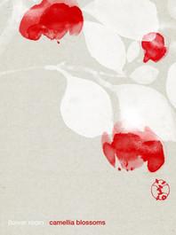 733 camellia