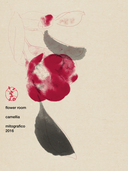 800 camellia