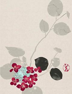 Hidetoshi Mito drawing 美登英利 ドローイング mitografico 紫陽花 hydrangea
