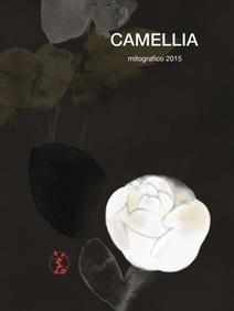 620 camellia