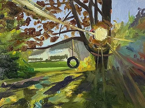 Backyard Tire Swing