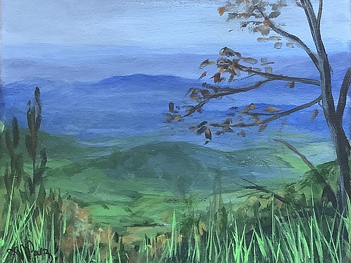 Shenandoah Scenery