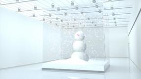Snowman in a box.jpg