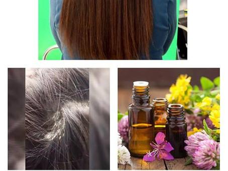 Parrucchieri Conegliano: Come intervenire in caso di Dermatosi acuta