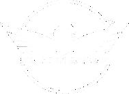 logo_falcon_armas.png
