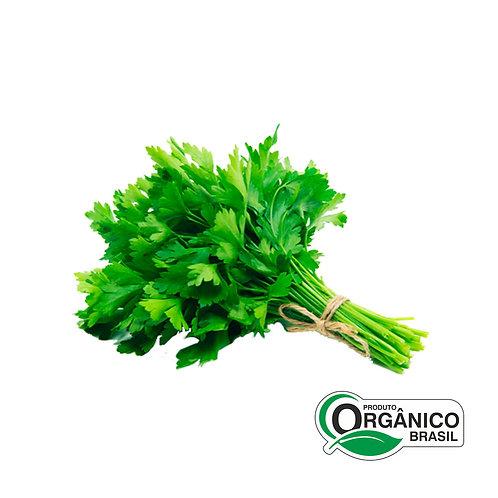 Salsa Orgânica Semeares 80g