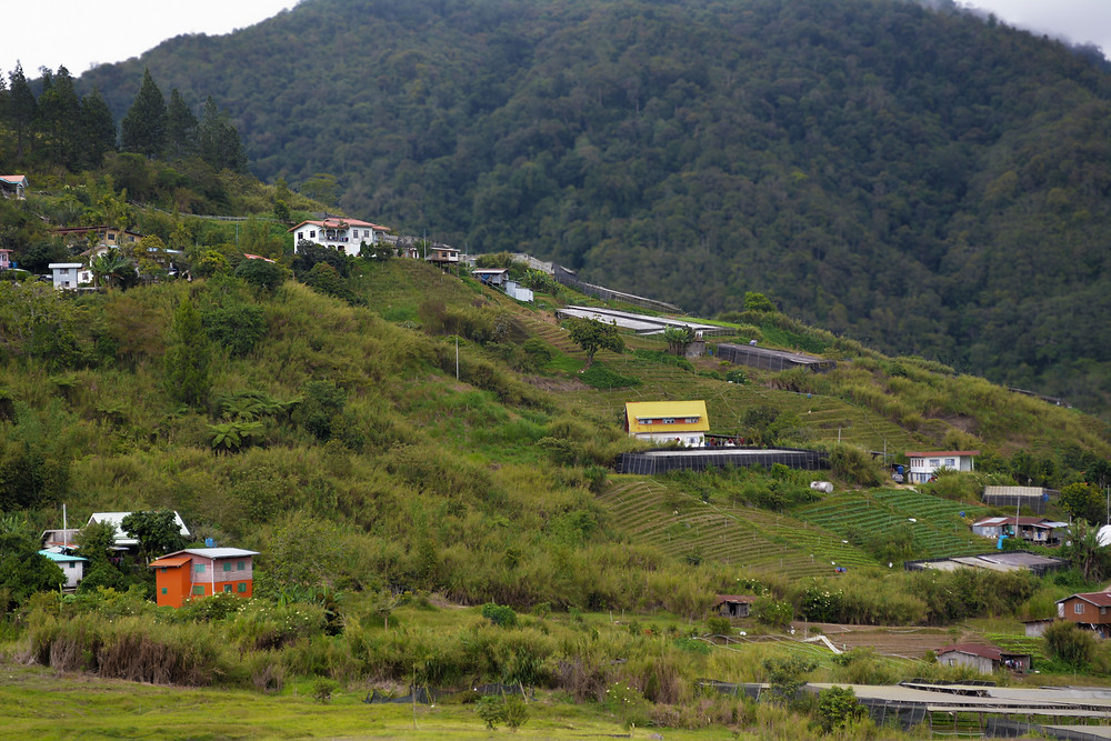 Kundasang Town