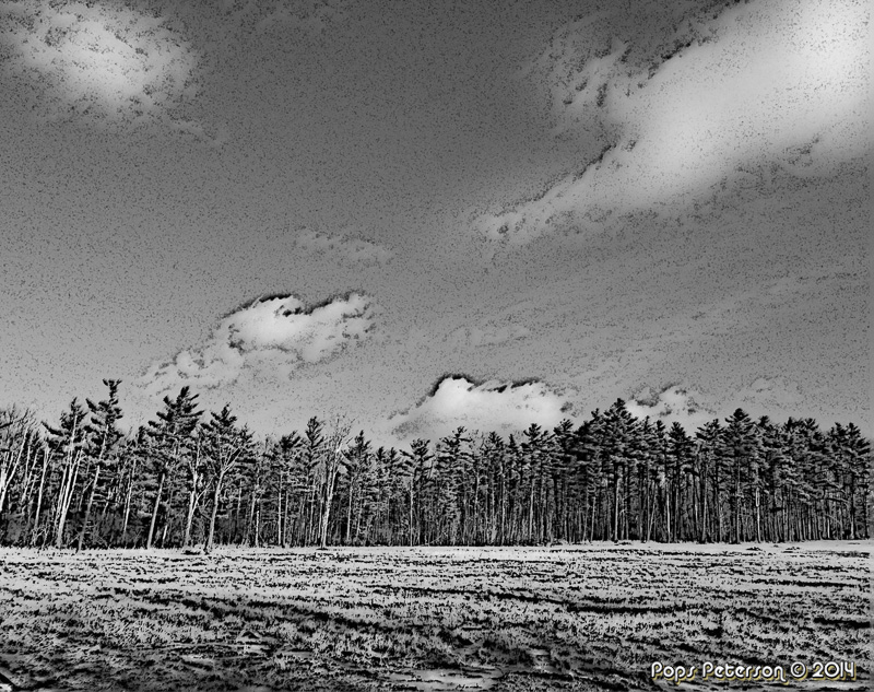 Stone Manor Drive East-bw