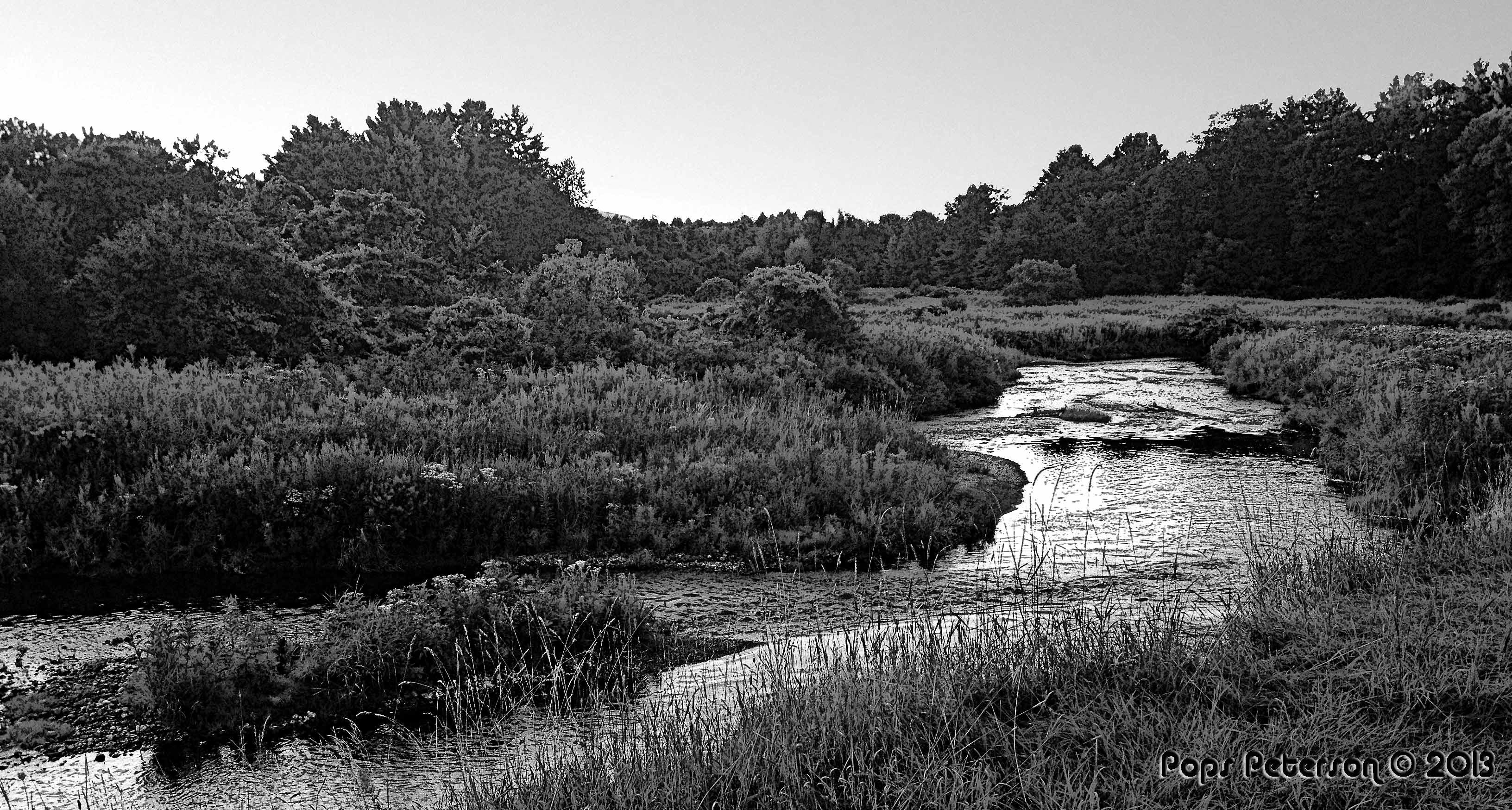 Williams-River-bw.jpg