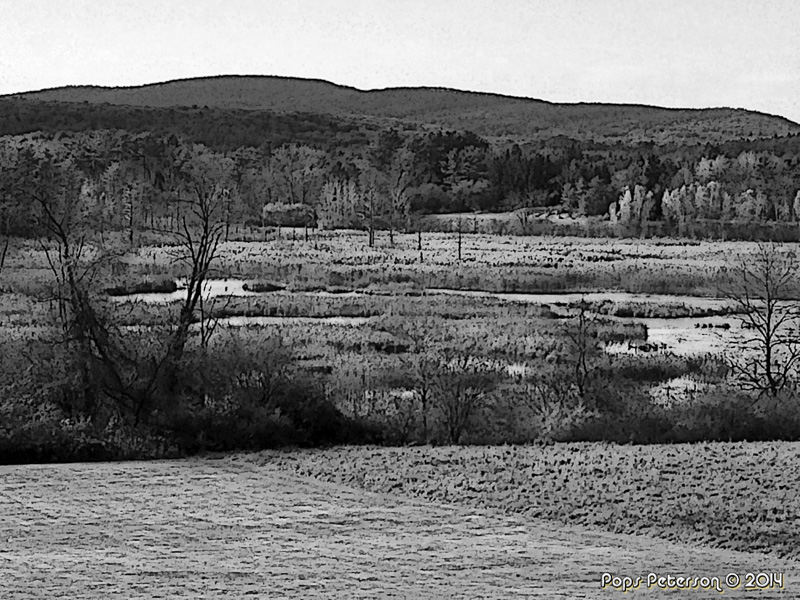 Ice Glen View-bw
