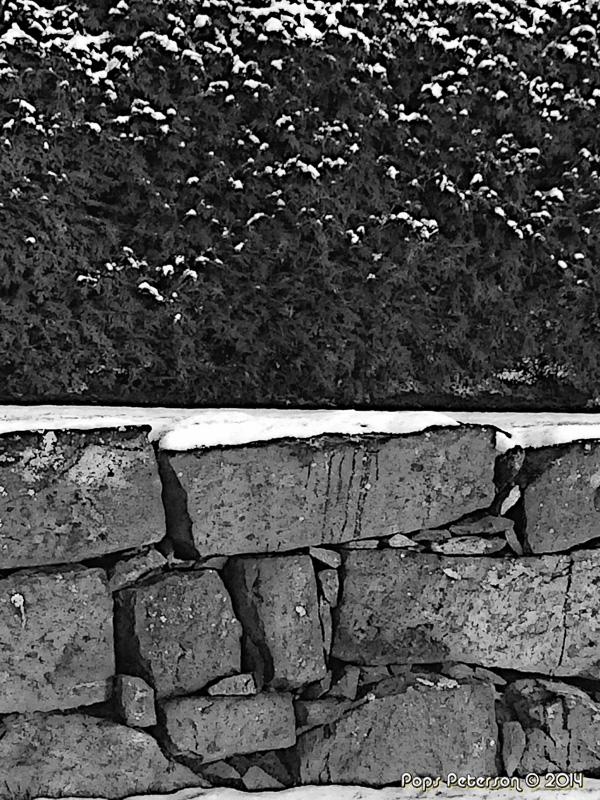 Ice Glen Stone and Hedge-bw