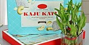 Kaju Katli + Bamboo Combo