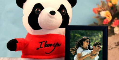 Panda Stuffed Toy and Photo Frame Combo