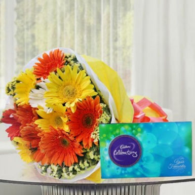 Assorted Daisies and Celebration Box Combo