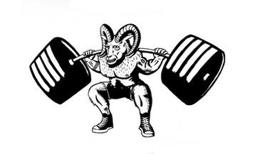 Pharos Athletic Muscle Beach Ram