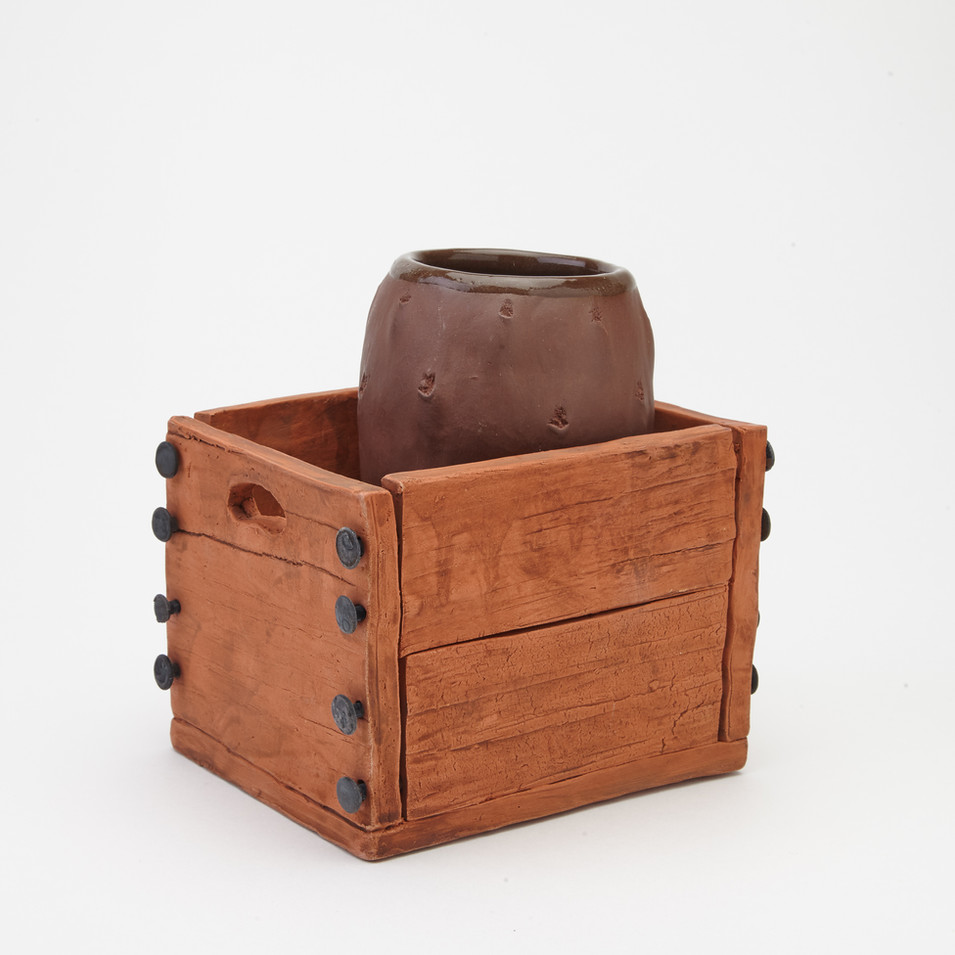 Prickly pear and Crate