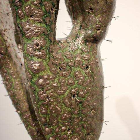 Cactus Elegance (surface detail)