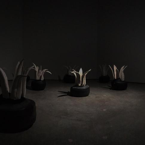 Pasaje (full installation)